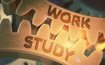 Come lavorare e studiare all'università? 5 consigli + 1!