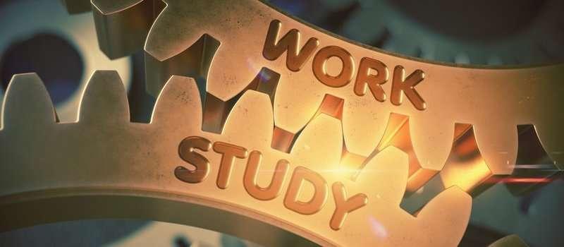 come lavorare e studiare all'università